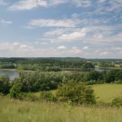Hecken und Baumgruppen säumen die Brodowiner Felder
